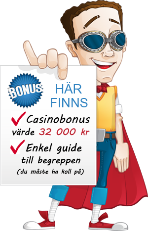 bonusgubbe